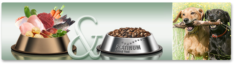 PLATINUM dog food as a supplement or alternative to a raw food diet