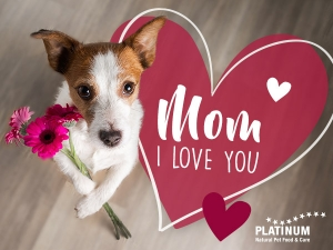 PLATINUM Mothersday 1