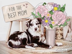 PLATINUM Mothersday 3