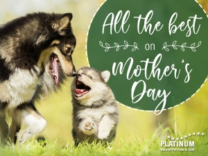 PLATINUM Mothersday 4